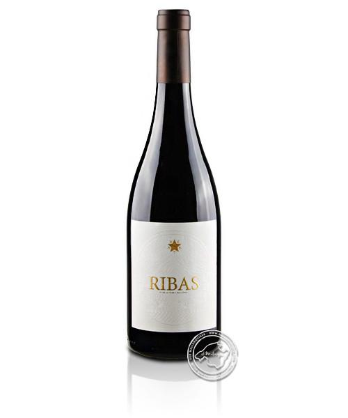 Negre Barrica, Vino Tinto 2017, 0,75-l-Flasche