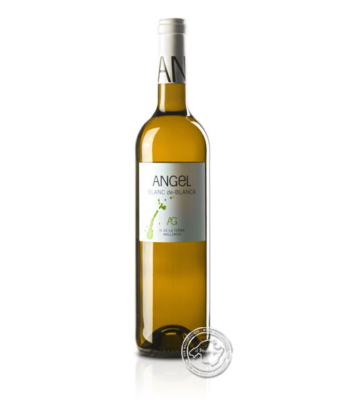 Blanc de Blancs, Vino Blanco 2019, 0,75-l-Flasche